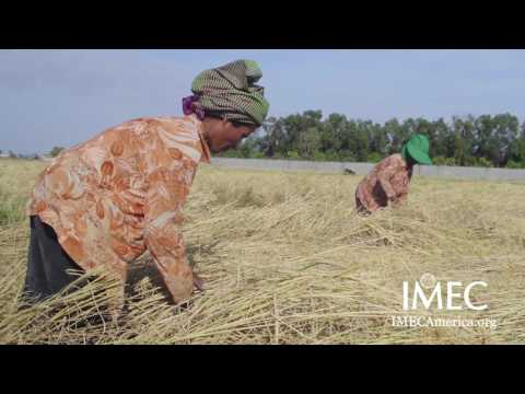 IMEC America: The Value of Women In Developing Countries