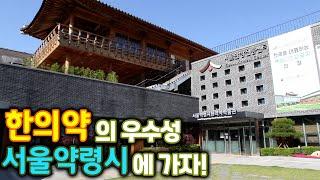 [ 귀농귀촌TV ] 한의약의 우수성 서울약령시에 가자!