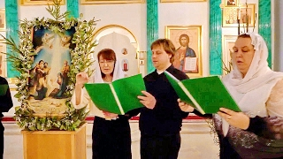 Рождественские колядки - Хор храма Св. Николая Чудотворца 2017