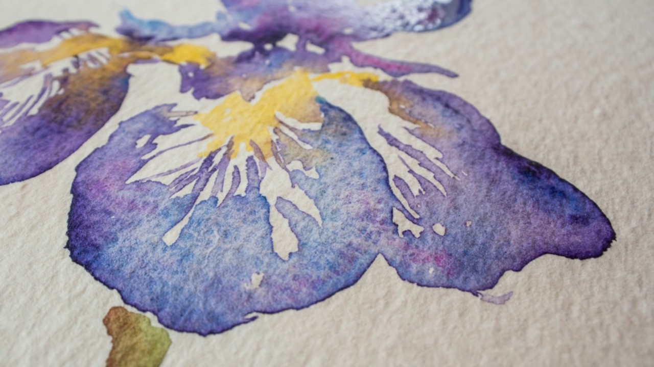 Paint an iris flower in watercolor with angela fehr youtube paint an iris flower in watercolor with angela fehr izmirmasajfo