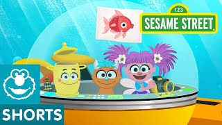 Sesame Street: Underwater Pictures | Abby's Amazing Adventures