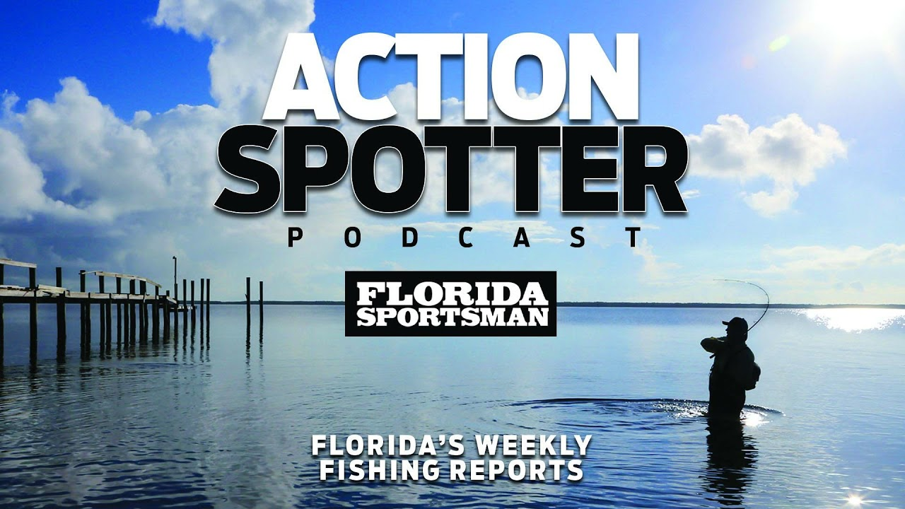 Episode 110: Mullet on the Move & Redfish Roundup | Action Spotter Podcast