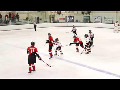Delaware Ducks vs Kings January 21 2018