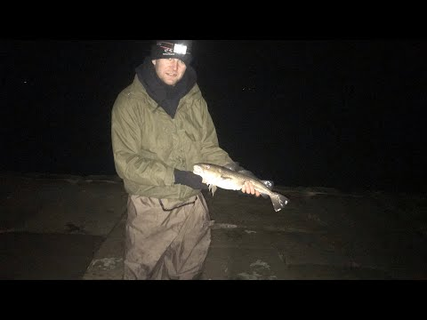 Saltburn And Whitby Cod  Fishing