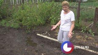 видео Где взять воду садоводу?