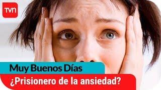 Ansiedad: ¿Todos podemos ser víctimas de este trastorno? | Muy buenos días