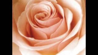 """スロウライダー (1999) Best Flower -B side collection- (2001) """"MIDI""""..."""