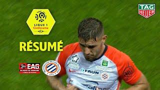 EA Guingamp - Montpellier Hérault SC ( 1-1 ) - Résumé - (EAG - MHSC) / 2018-19