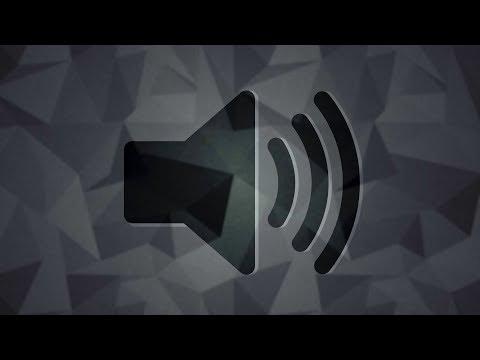 SQUEAKY BIKE HORN [Sound Effect]