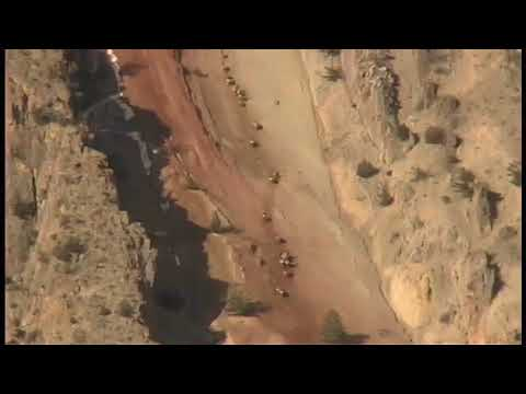 200 Elk Migrate Up Devil's Slide
