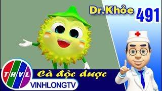 THVL | Dr. Khỏe - Tập 491: Cà độc dược - Phần 1