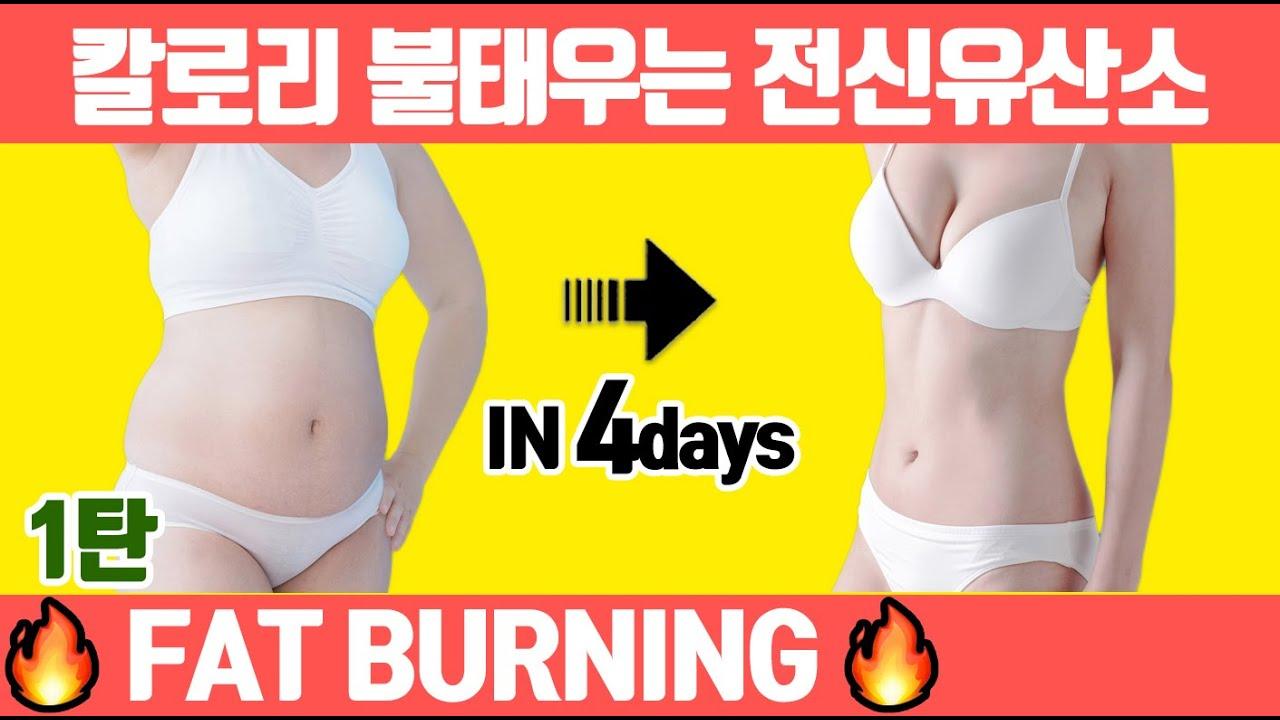 🔥출렁이는 지방🔥단기간에 빼고 싶으면 이 유산소운동 1달만 하세요. (유산소 다이어트/전신 유산소 타바타/칼로리 폭발 운동)