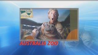 Steve Irwin Australia Zoo Crocoseum Show Part 1 2015 The Crocodile Hunter