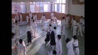 Budo: The Art of Killing - Aikido