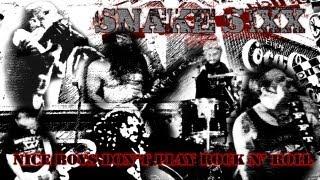 Snake Sixx - Nice Boys Don