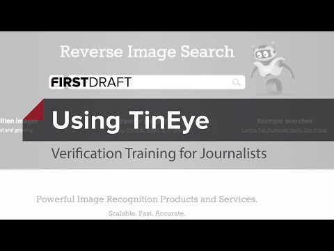 Reverse Image Search With TinEye