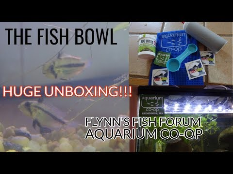 HUGE FISH UNBOXING! Aquarium Co-Op and Flynn's Fish Forum! DEAD FISH! :(