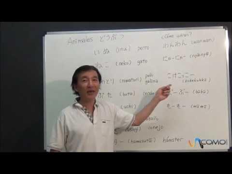 Curso de Japonés - S6 - Saludos   Silabas N de YouTube · Duração:  13 minutos 52 segundos