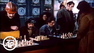 Двадцать вопросов для королев. О всемирно известных советских шахматистках (1980)