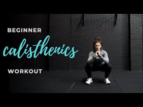 Beginner Full Body Calisthenics Workout - No Equipment
