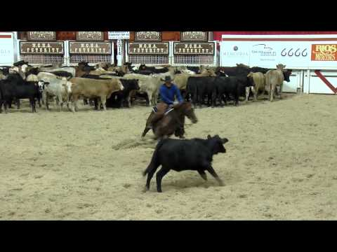 Classy CD Cat and Phil Hanson — 2014 NCHA Futurity Open Champions