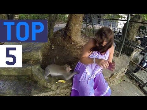 Top 5 Man vs. Beast || JukinVideo Top Five
