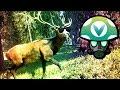 MLG Trick Shots Hunter Call of the Wild - Rev [Vinesauce]