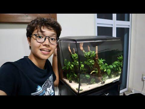 Fluval Flex Aquarium Rescape!