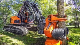 Powerful Big Tree Harvester Working, Amazing Giant Excavator Cutting Tree, Fast Tree Removal Machine