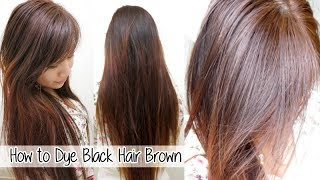 How to Dye Hair from Black to Brown Without Bleach l Loreal HiColor: Vanilla Champagne