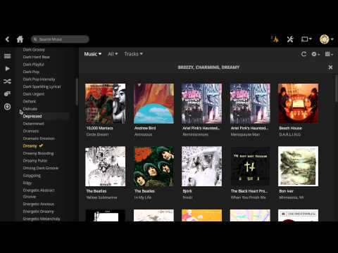Music on Plex: Creating a mood mix