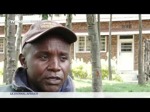 Rwanda : les derniers combattants FDLR, expulsés de RDC, sont arrivés au camp de Mutobo.