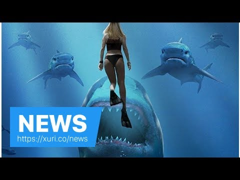 News - The next part of the sharks Deep Blue Sea 2 was a first trailer