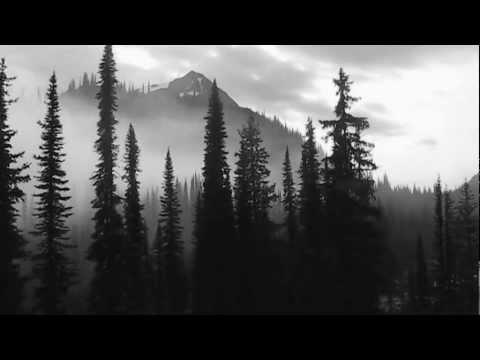 Nature Relaxation Video ~ Meditation ~ Drifting Mist Time Lapse ~ Selkirk Mountains