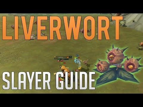 Liverworts (Vile Blooms) Slayer Guide | Runescape 3