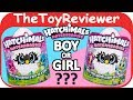 Hatchimals HatchiBabies Ponette & CheeTree Boy or Girl Eggs Unboxing Toy Review by TheToyReviewer