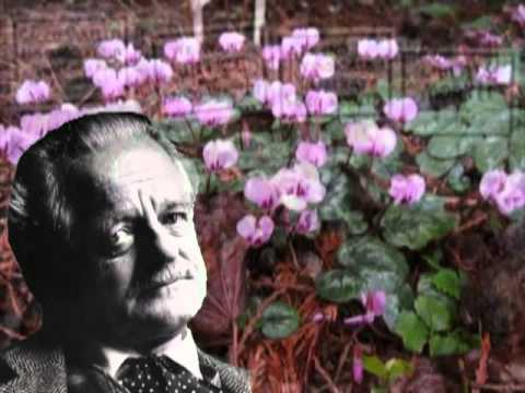 5 Poems by kenneth Rexroth