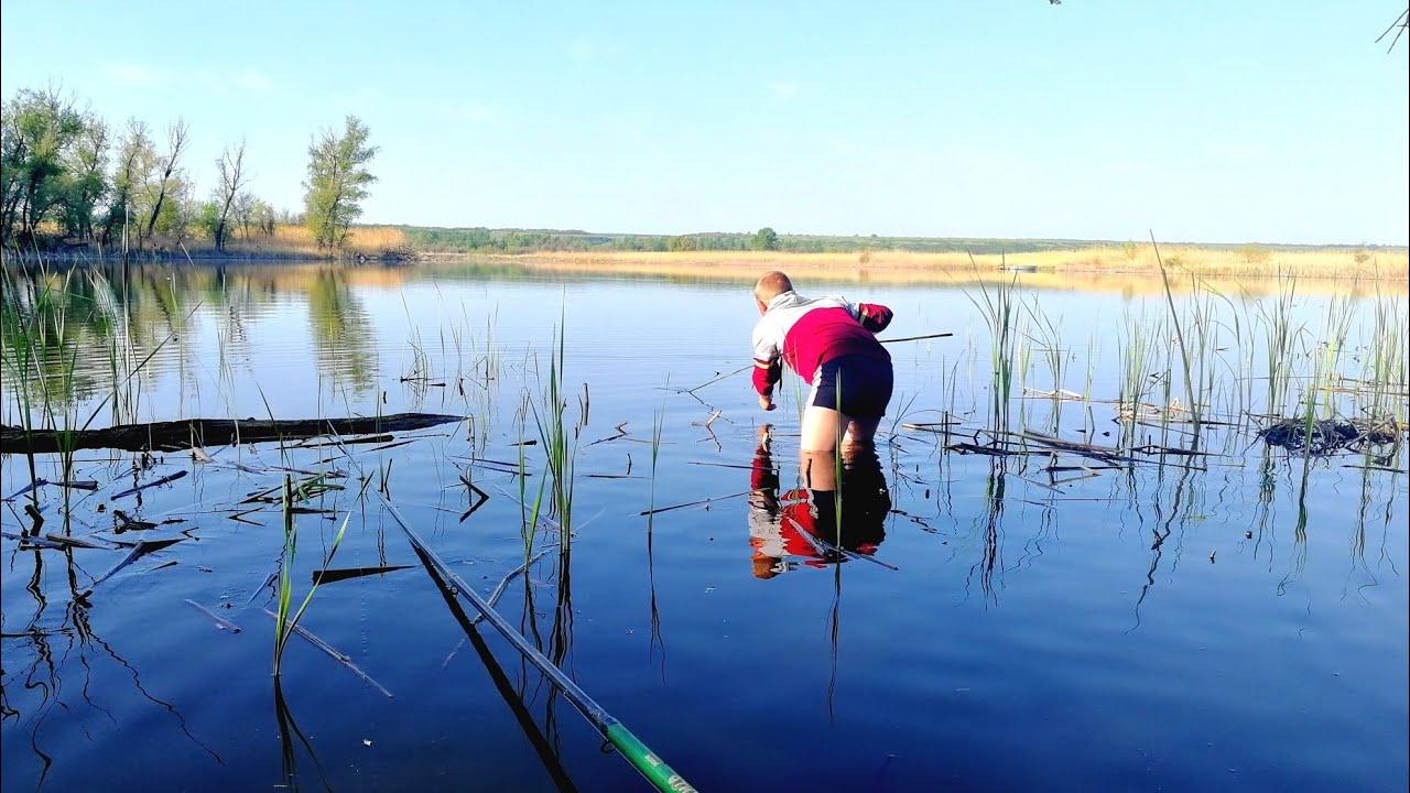 Рыбалка в камыше ЗАКИНУЛИ ПРИКОРМКУ И НАЧАЛОСЬ ПОЛЕЗ ЗА САЗАНОМ