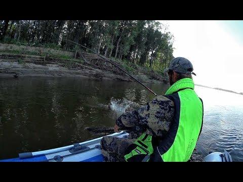 В ЭТИХ КОРЯГАХ ОДНИ КРОКОДИЛЫ!!! Трофейная рыбалка 2019 ,Обь,джиг,Крупная щука ,trofi Fishing