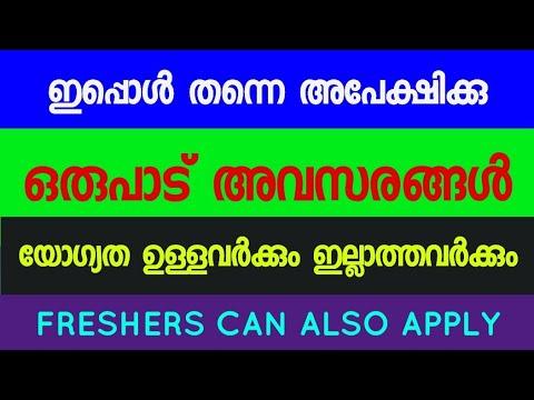 250 Vacancy | Urgent Hiring | Kerala Latest Job vacancy 2021 | kerala IT Job | Jobs For IT