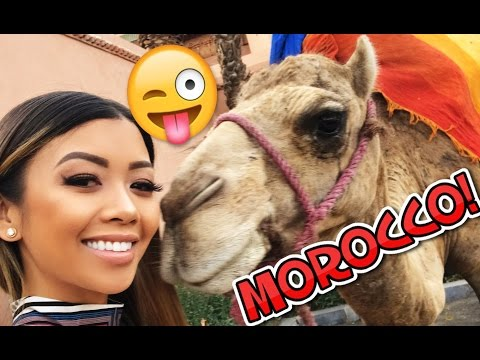 MOROCCO TRIP! WE MET A CAMEL AND RODE ATVs!   Liane V Vlogs