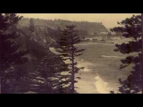 The Pine Trees Waved Goodbye : Rick Robertson