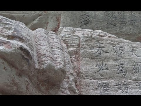 Himalayan stone carving revealed as showing supernova daily mail