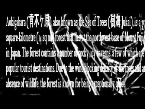【ORIGINAL PV】 Aokigahara 【Nekomura Iroha】
