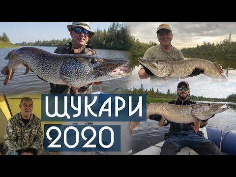 Щукари 2020