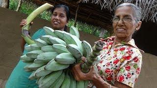 Ash Plantain (Cooking Banana) Recipe by Grandma and Daughter ❤ Village Life