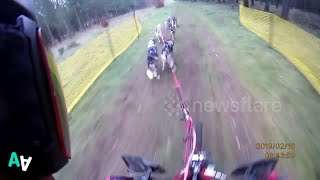 Huskies Compete in Dog-racing Championship