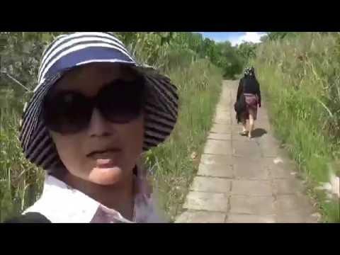 Campuhan Ridge Walk , Ubud , Bali
