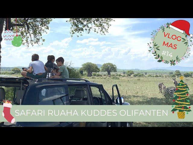 Safari Dag 3 Enorme kuddes olifanten | Safari Ruaha National Park Tanzania | Vlogmas #14 Selma Kamm
