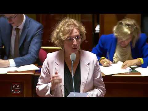 Questions au gouvernement sur les maisons de l'emploi